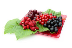 Different berries lying on a red plate. Raspberries, currant, cherry, strawberry and green leaf  are on a red plate on a white background Royalty Free Stock Photography