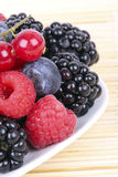 Different berries on plate, closeup. Different berries on white plate, closeup Royalty Free Stock Photo