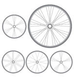 Different bicycle wheels on a white background Royalty Free Stock Photography