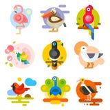 Different birds vector illustration