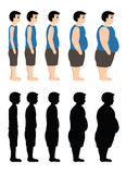 Different Body Mass from thin to fat also in silhouette. Vector illustration on a white background Royalty Free Stock Image