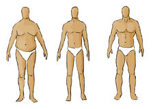 Different body types Stock Image