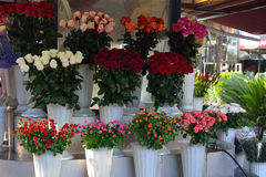 Different bouquets of roses available for sale Stock Photos