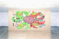 Different brain sides concept Royalty Free Stock Photo