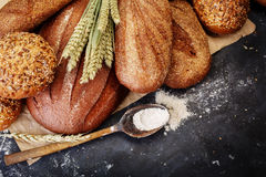 Different bread  copy space Stock Images