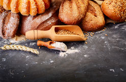 Different bread on a rustic dark background Stock Image