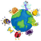Different bugs around the world. Illustration Stock Photography