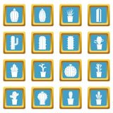 Different cactuses icons azure Stock Image