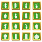 Different cactuses icons set green Royalty Free Stock Images