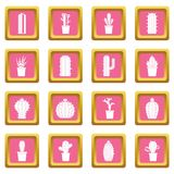 Different cactuses icons pink Stock Image