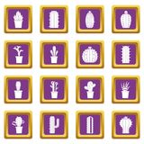 Different cactuses icons set purple Stock Photos