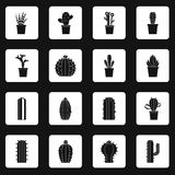 Different cactuses icons set squares vector Stock Photo