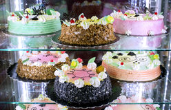 Different cakes in a display of pastry Stock Photography