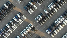 Different cars parked on modern auto warehouse parking area. Cars parked on huge auto warehouse asphalt parking area with white marking lit by morning sun stock video footage