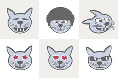 Different cat Grimaces Royalty Free Stock Photo