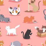Different cats kitty play defferent pose character illustration vector seamless pattern background Royalty Free Stock Photos