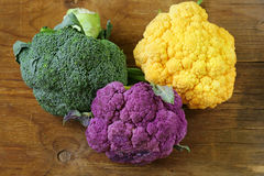 Different cauliflower broccoli Stock Images