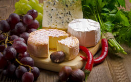 Different cheese kinds Royalty Free Stock Photos