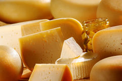 Different cheese products. Different sort of farm made cheese produced from goat milk Royalty Free Stock Photography