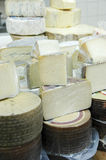 Different Cheeses. Variety of cheeses on display in a store at a farmers market Royalty Free Stock Images