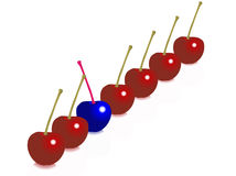 A different cherry. A blue cherry among others Stock Photo