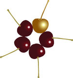 A different cherry. A golden cherry among others Royalty Free Stock Photography