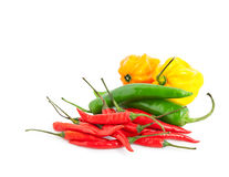 Different chili peppers Stock Image