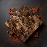 Different chocolates and cocoa powder Stock Photography