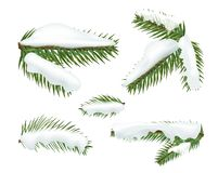 Different christmas tree branches witj snow caps vector illustration