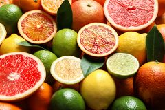 Different citrus fruits as background. Healthy diet. Different citrus fruits as background, closeup. Healthy diet royalty free stock images