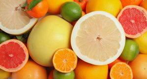 Different citrus fruits as background. Top view stock photos