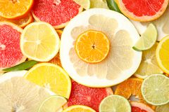 Different citrus fruits as background. Top view stock images