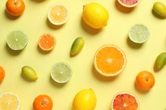 Different citrus fruits on color background stock image