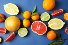 Different citrus fruits on color background. Top view stock image