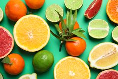 Different citrus fruits on color background. Top view stock images