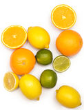 Different citrus fruits over the white background Royalty Free Stock Photo