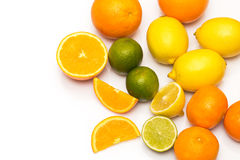Different citrus fruits over the white background Royalty Free Stock Photos