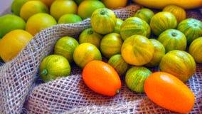 Different citrus fruits, Valencia, Spain Stock Images