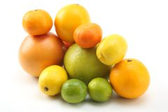Different citrus fruits on white background. The different citrus fruits on white background royalty free stock photos