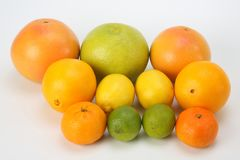 Different citrus fruits on white background. The different citrus fruits on white background stock images