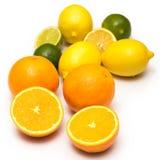 Different citrus fruits Stock Photo