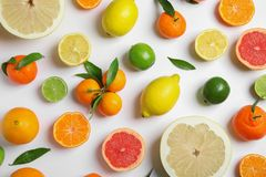 Different citrus fruits on white background. Flat lay stock images