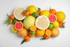 Different citrus fruits on white background. Top view stock image