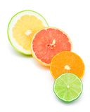 Different citruses Royalty Free Stock Photos
