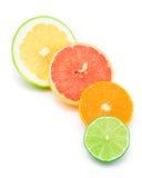 Different citruses. Mandarine (orange), lemon, grapefruit and lime halves together isolated on white Royalty Free Stock Photos