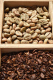 Different coffee forms in wooden box Stock Image