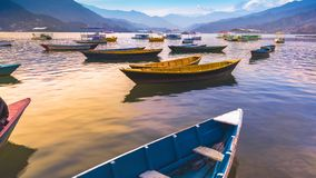 Different color Boats parked in Phewa Lake. Sunset on background Pokhara Nepal royalty free stock photo