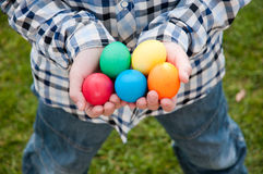 Egg hunt Stock Image