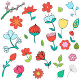 Different color flowers vector illustration Royalty Free Stock Photo