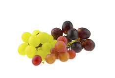 Different color grapes Royalty Free Stock Photos